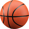Basketball team roster software
