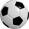 Soccer team management software