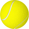 Tennis team roster software