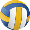 Volleyball team management software