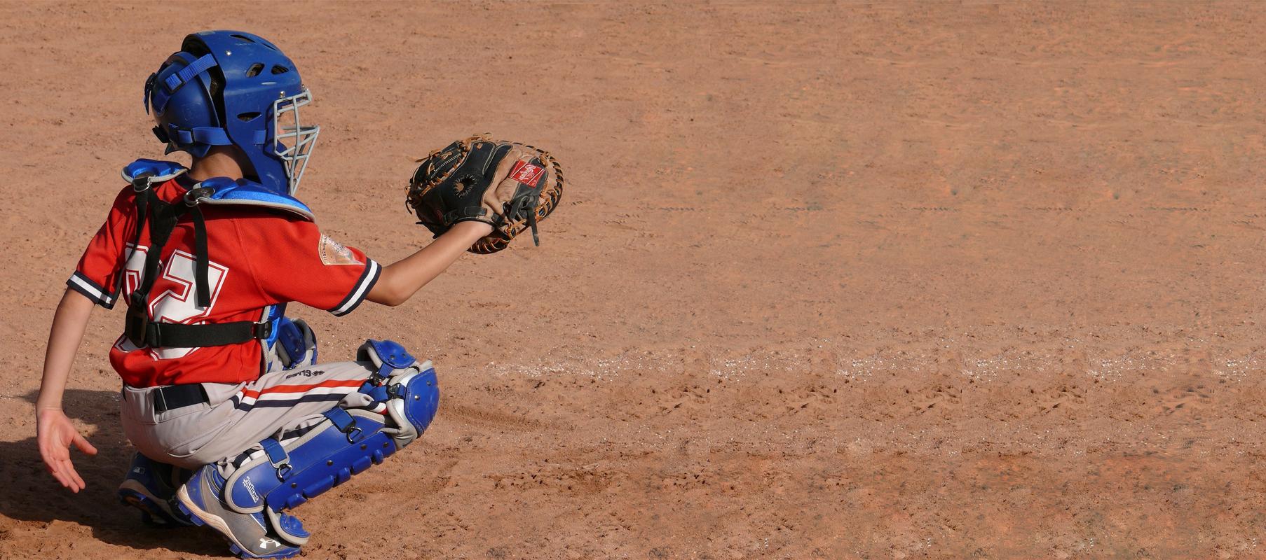 Baseball League Management Software