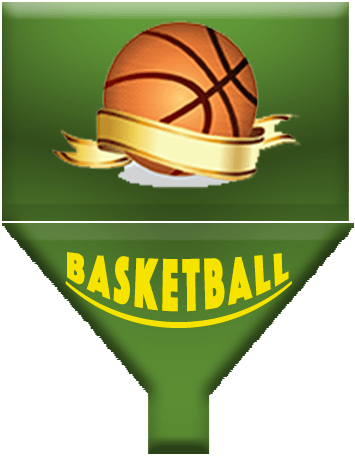 Online Basketball Management App