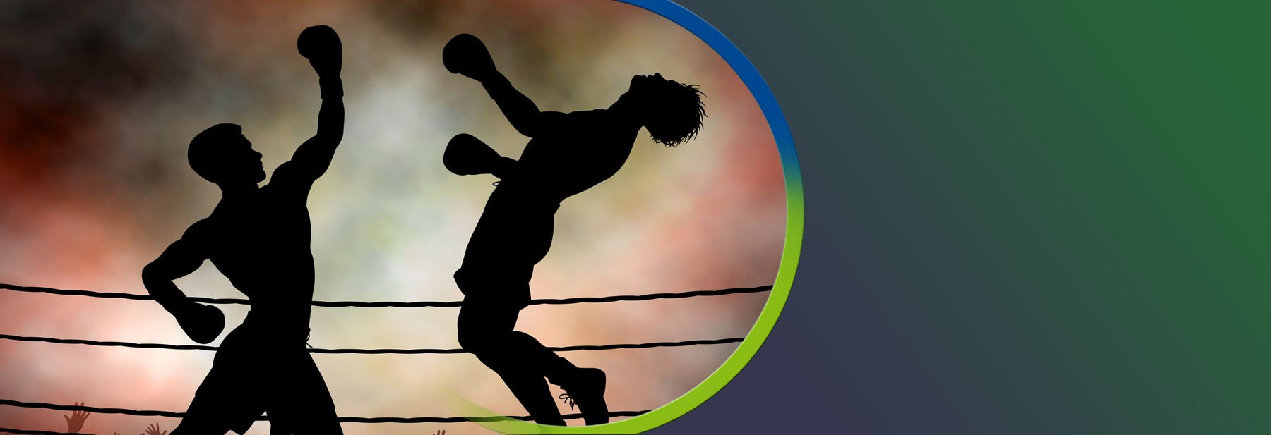 Boxing Management Software for Clubs