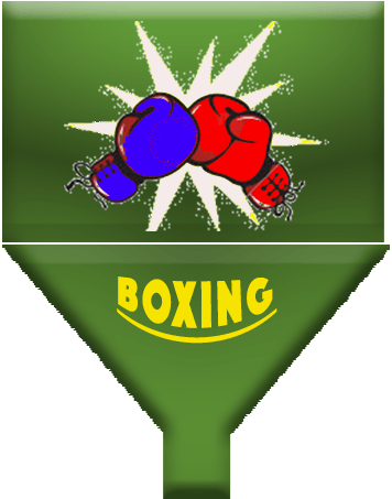 Online Boxing Management App