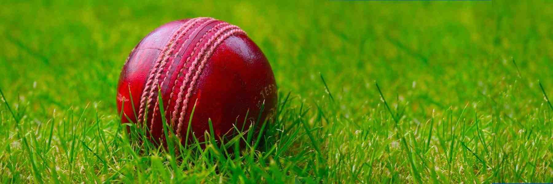 Cricket League Management Software