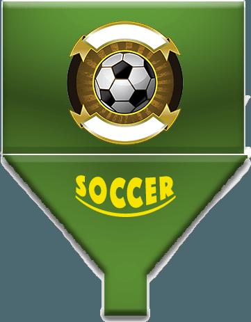 Online Soccer Management App