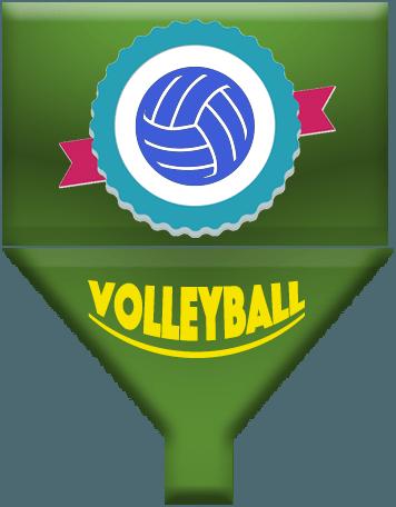 Online Volleyball Management App