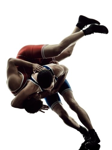 Play Wrestling